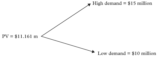 Figure 1: Project's present value
