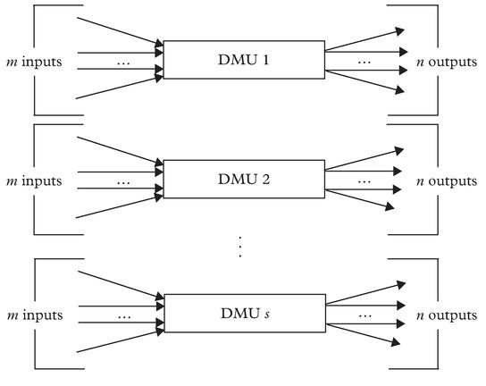 Figure 2: DMU and homogeneous units